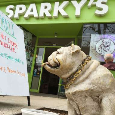 Dog in front of Sparky's