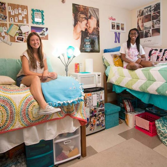 Roommates in their residence hall room