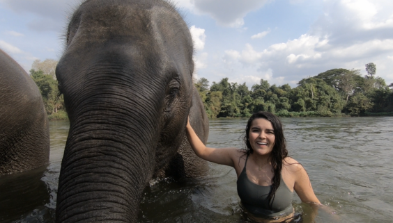 Mizzou student Madeleine Brownfield smiles at the camera while resting her hand on an elephant during her study abroad experience in Thailand